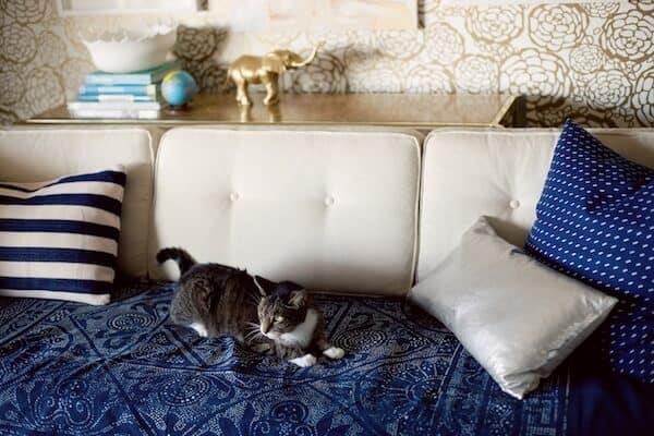 joy cho's slipcovered couch - stylebyemilyhenderson.com