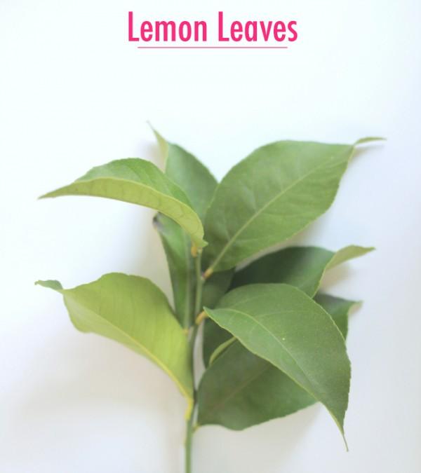 lemonleaves