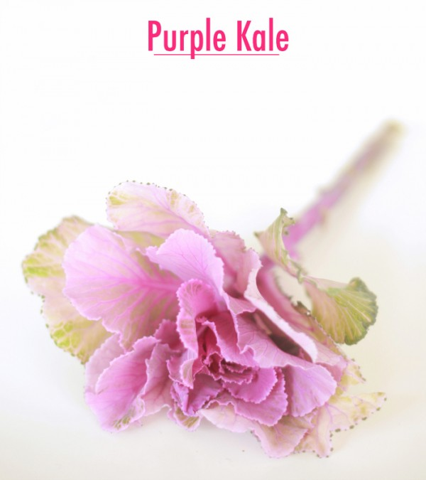 purplekale700