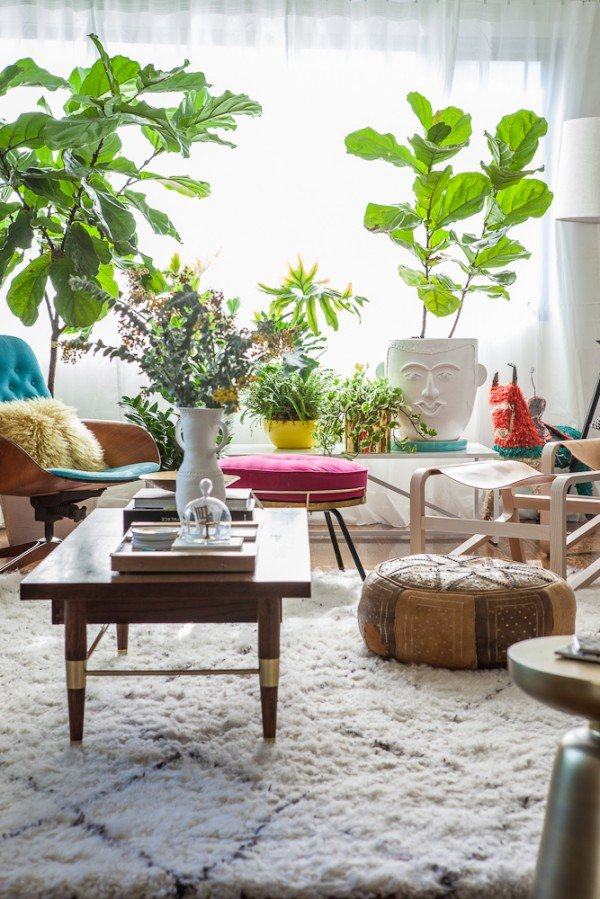 bri emery's (designlovefest) living room