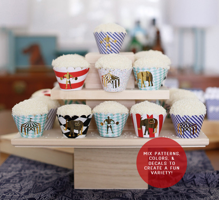 Cricut Cupcake Variety