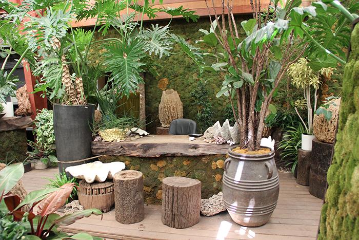 The Tropics Desk