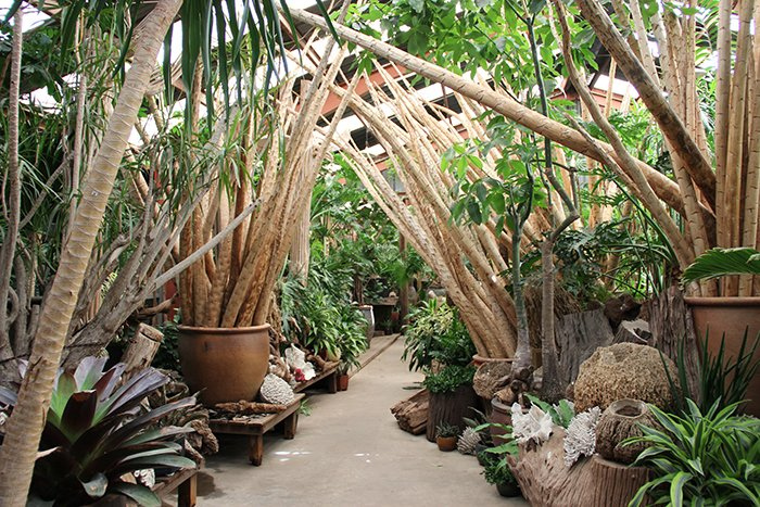 The Tropics Entry Area