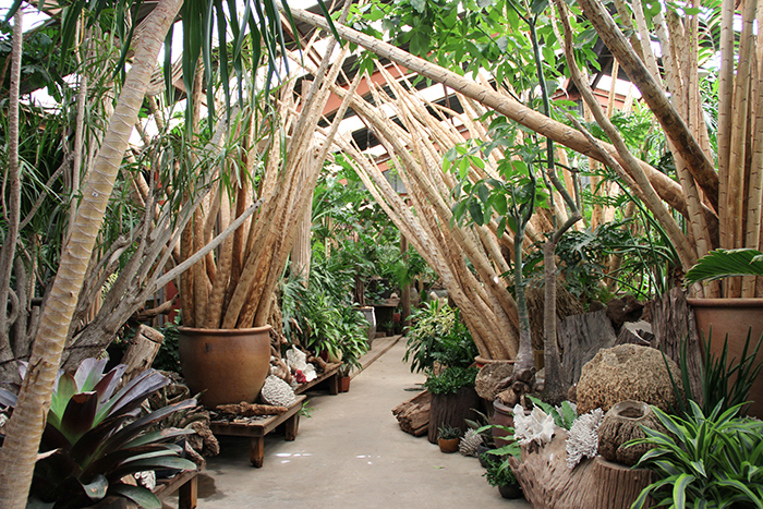 The Tropics Entry Area