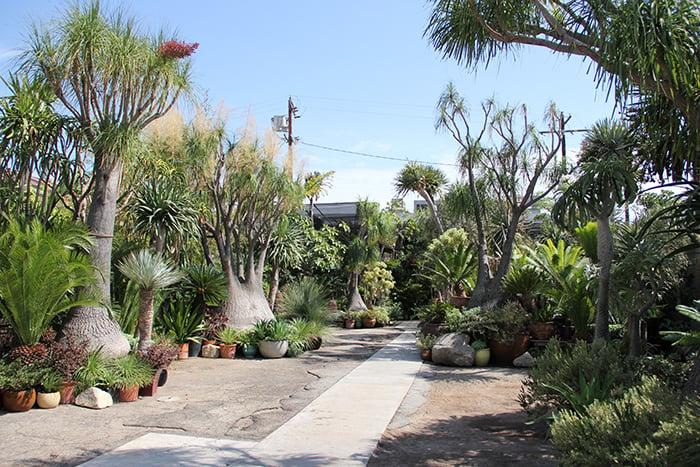 The Tropics Outdoor Area