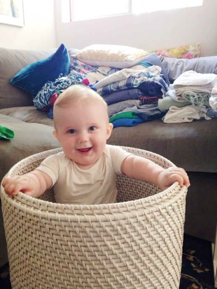 charlie-in-a-basket