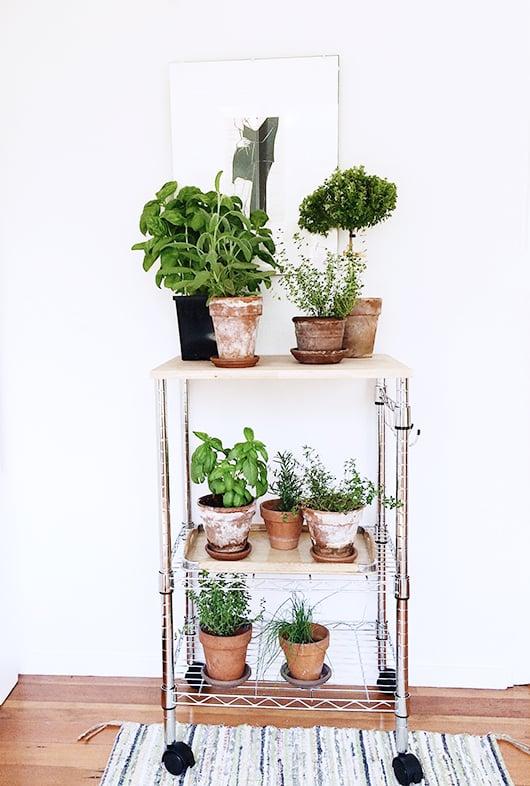 plantstand-1