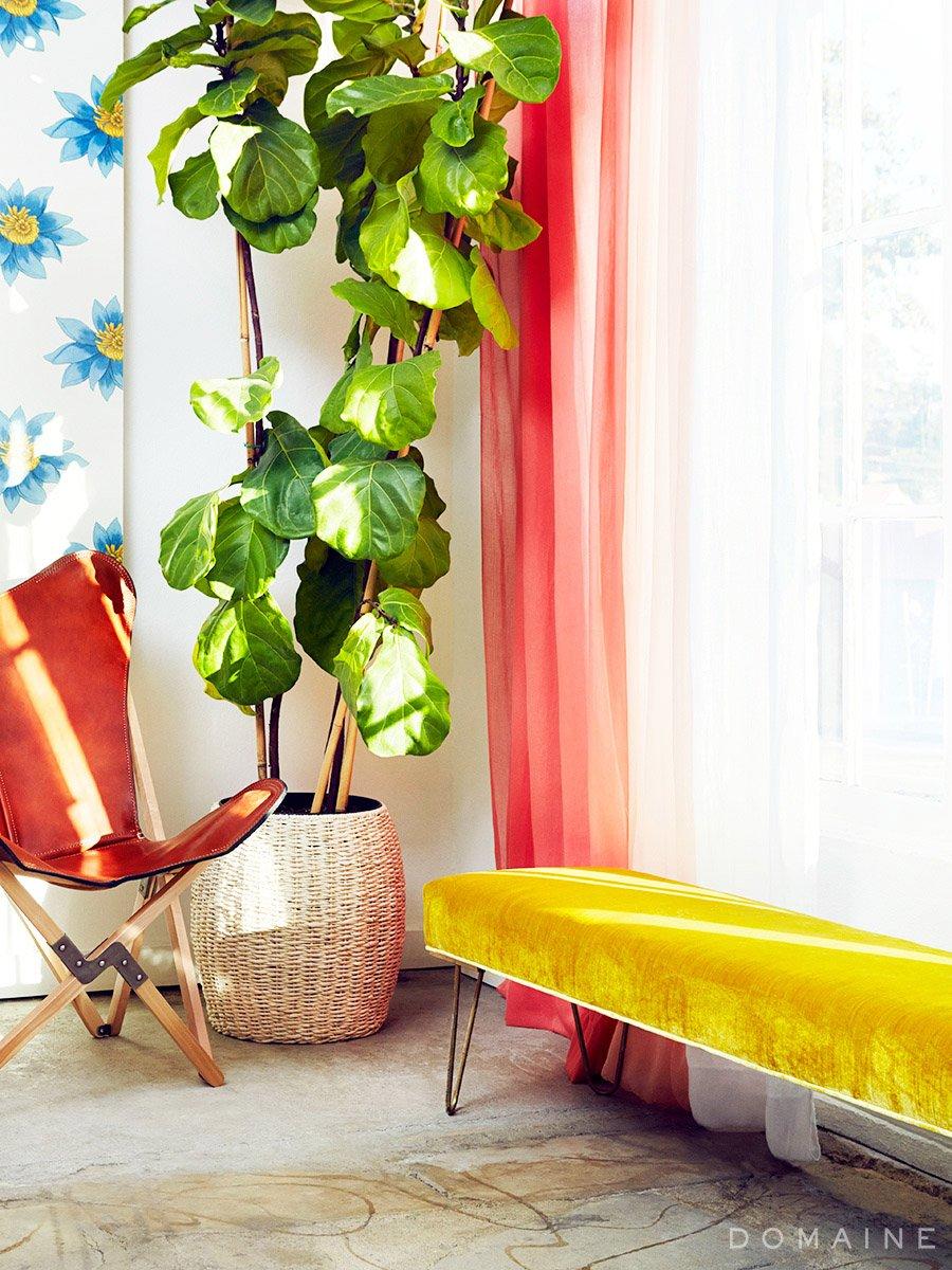 Emily Henderson Studio_Velvet Bench