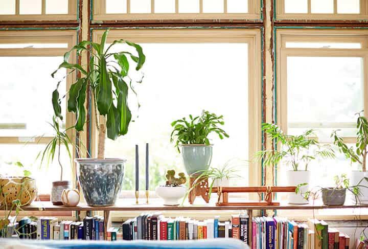 Emily_Katz_livingroom_details