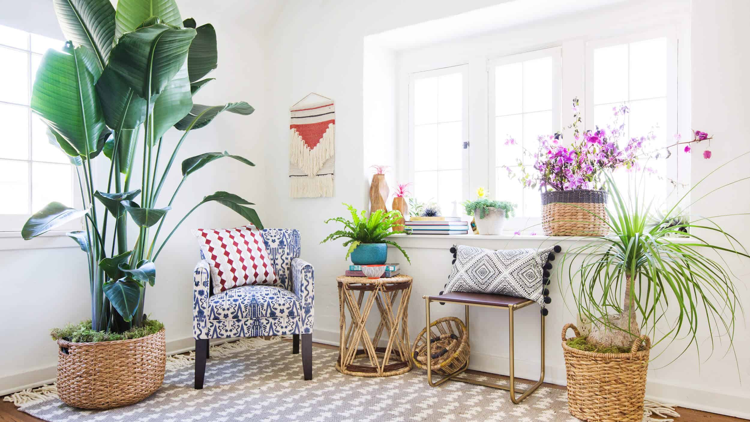 emily-henderson_target_find-your-style_vignette_boho_anthro_eclectic_collected_4