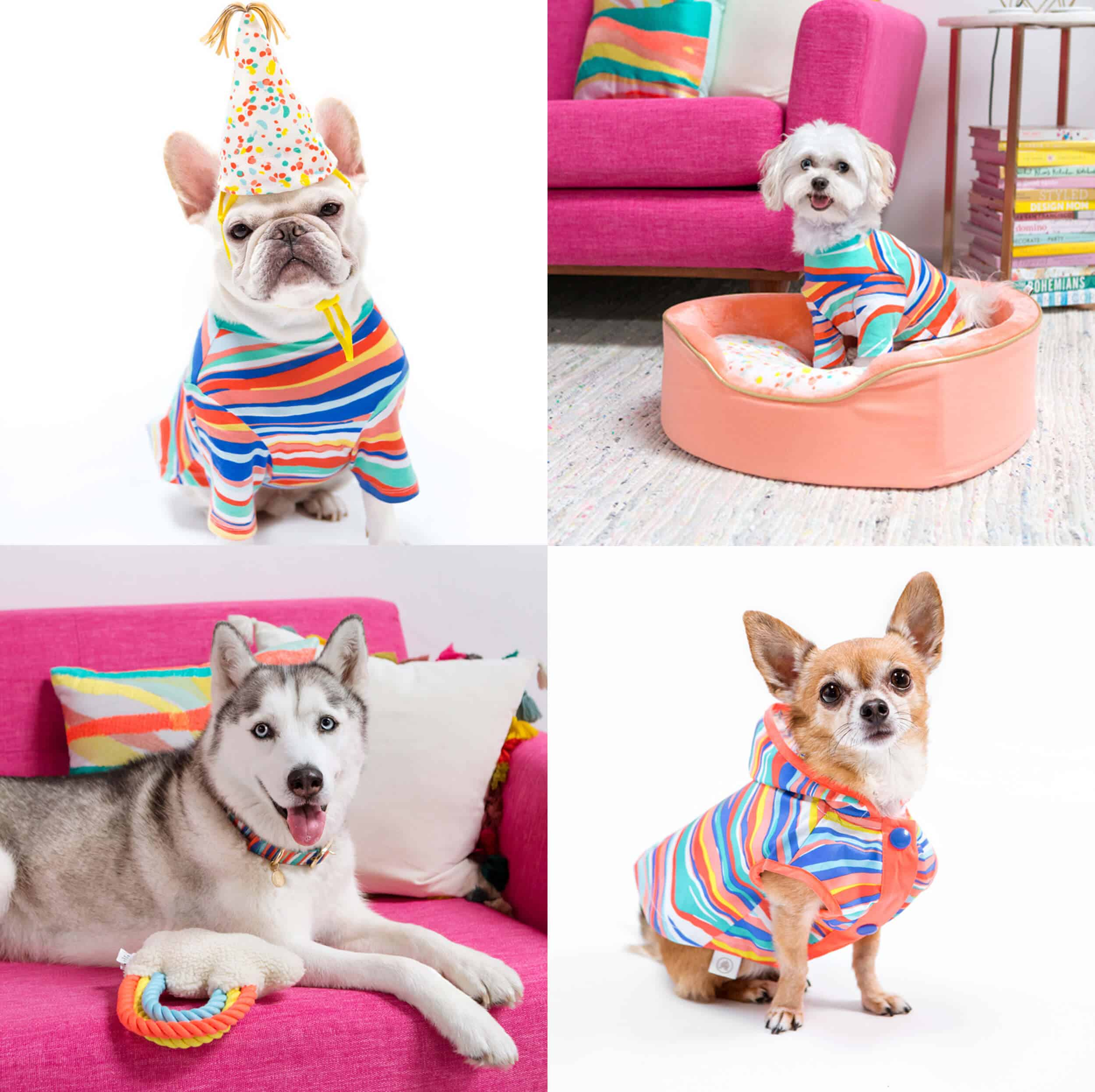 Emily Henderson_My Friend's Products_Oh Joy_Target_Pet Line_Collage