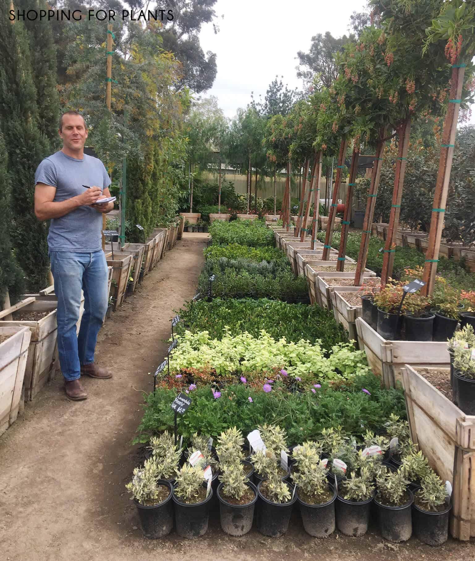 Emily-Henderson_Waverly_Modern-English-Cottage_Backyard_Plan-From-Gardener_Shopping-for-Plants_2