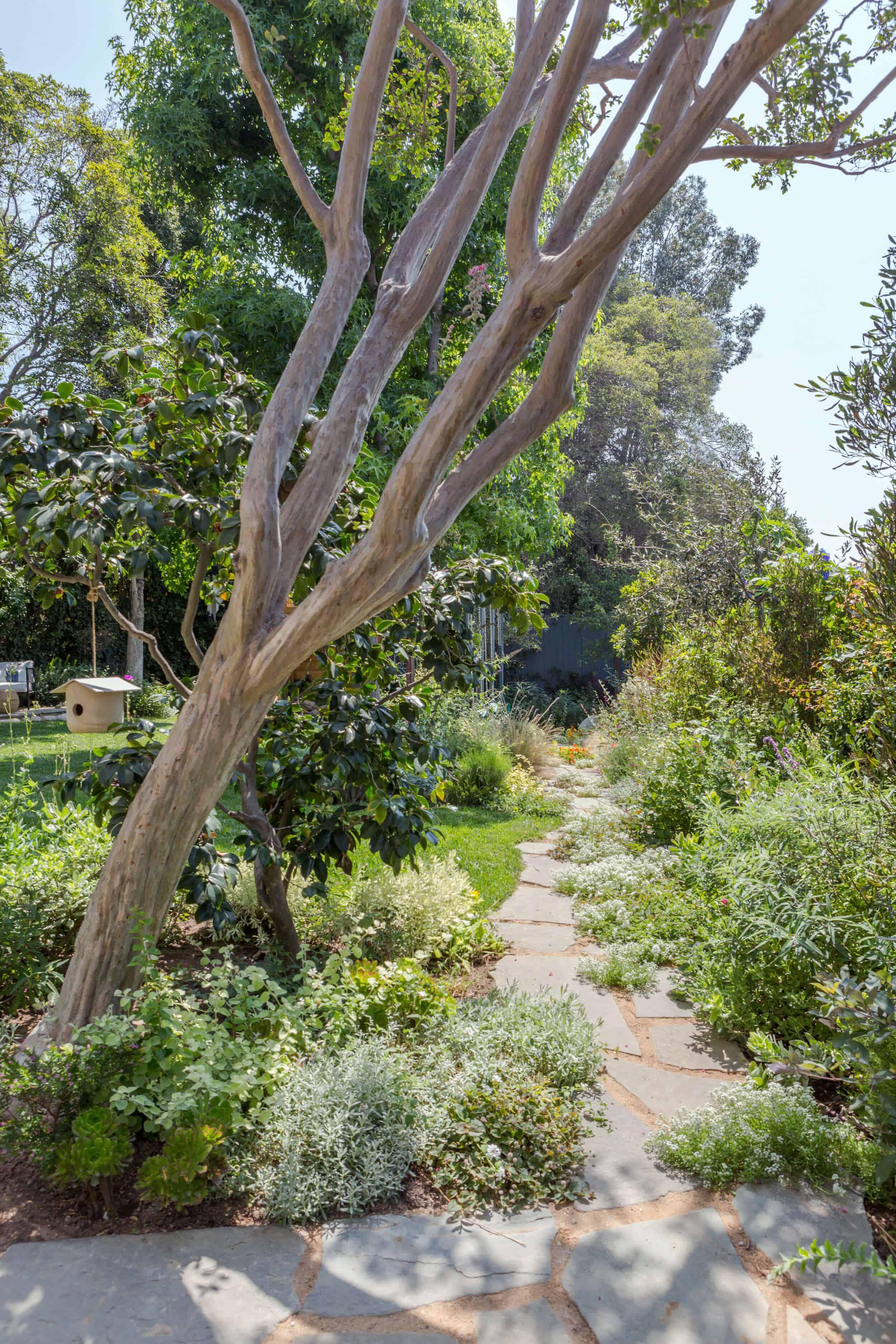Emily-Henderson-Backyard-1012