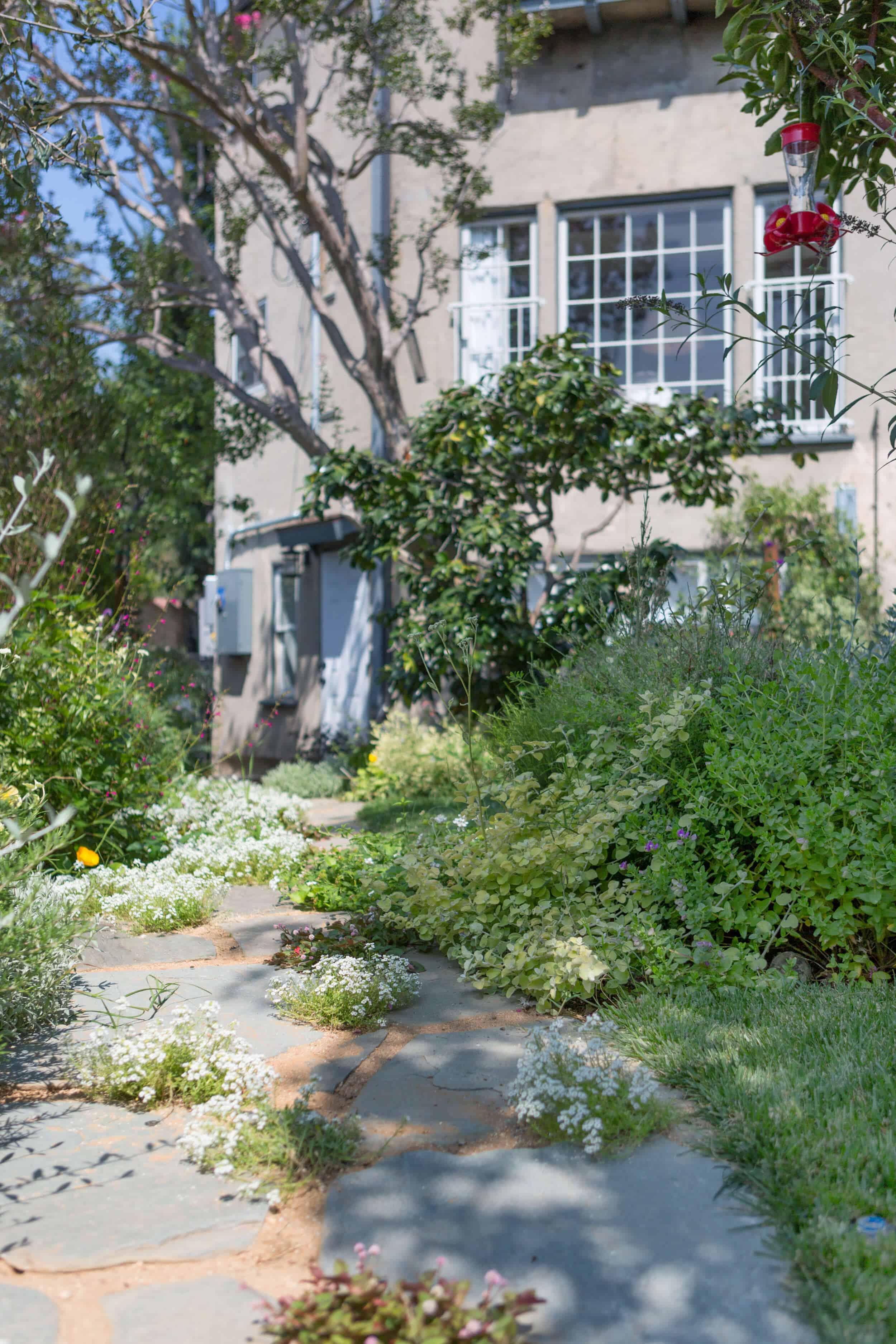 Emily-Henderson-Backyard-481