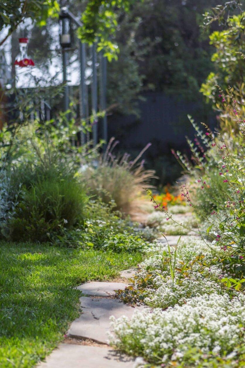 Emily-Henderson-Backyard-571
