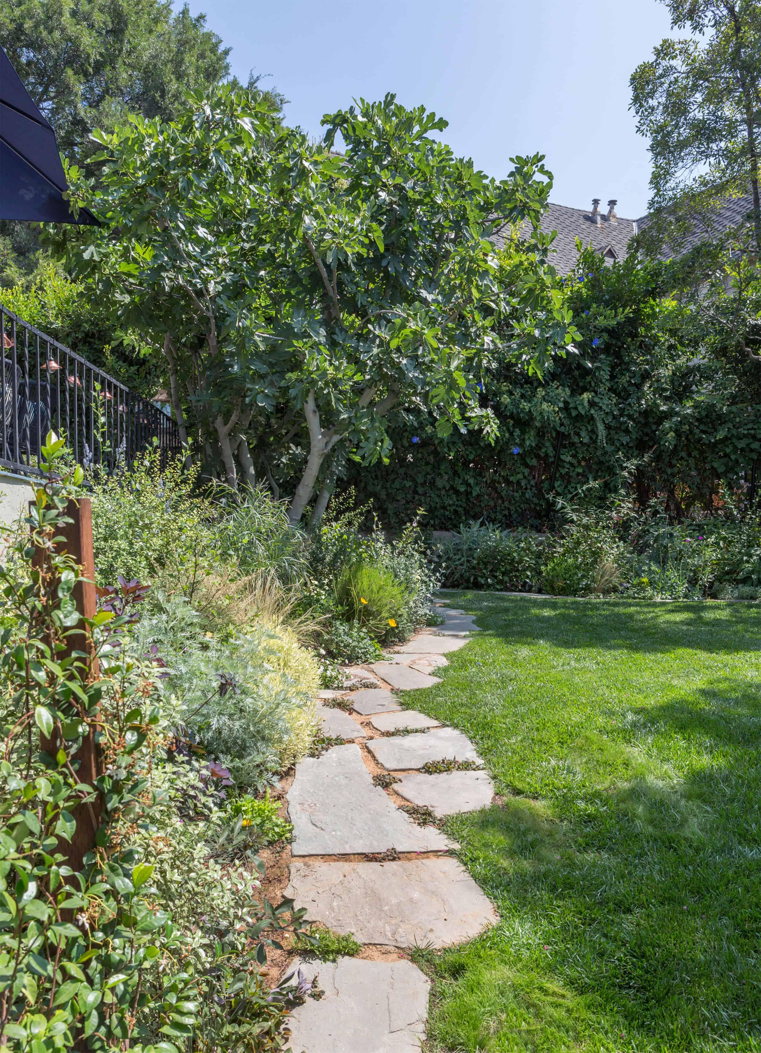 Emily-Henderson-Backyard-641