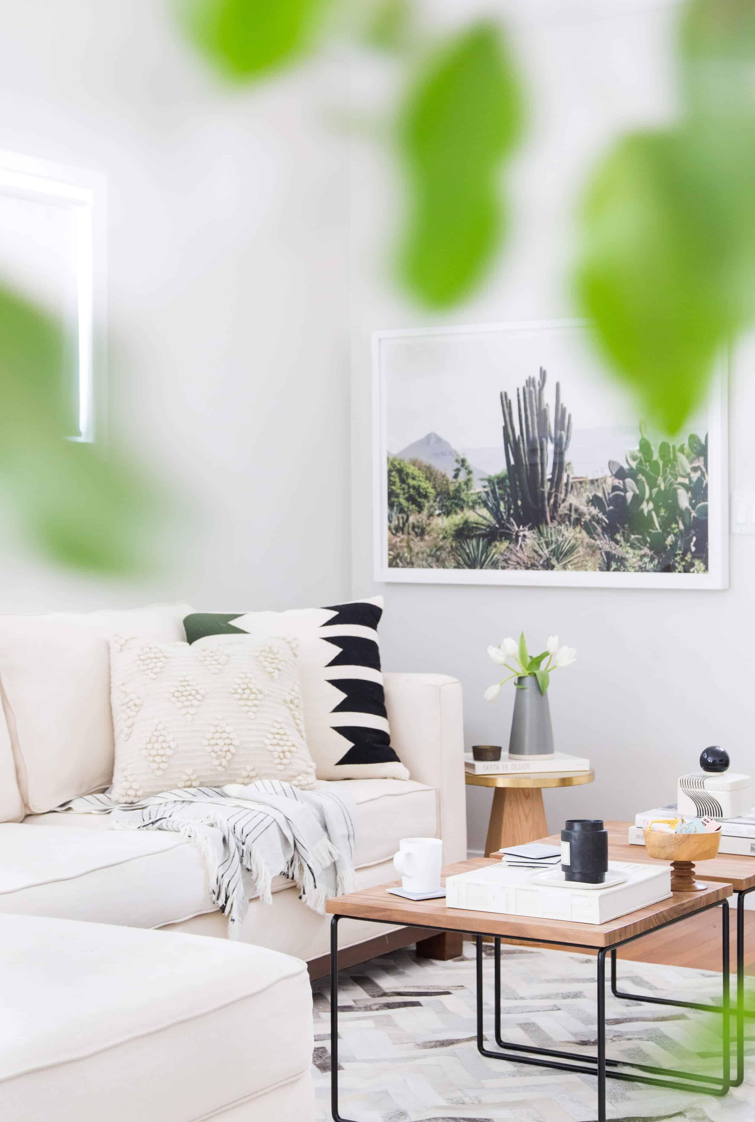 Emily Henderson Citizenry Photo Artwork Tessa Living Room Boho 15