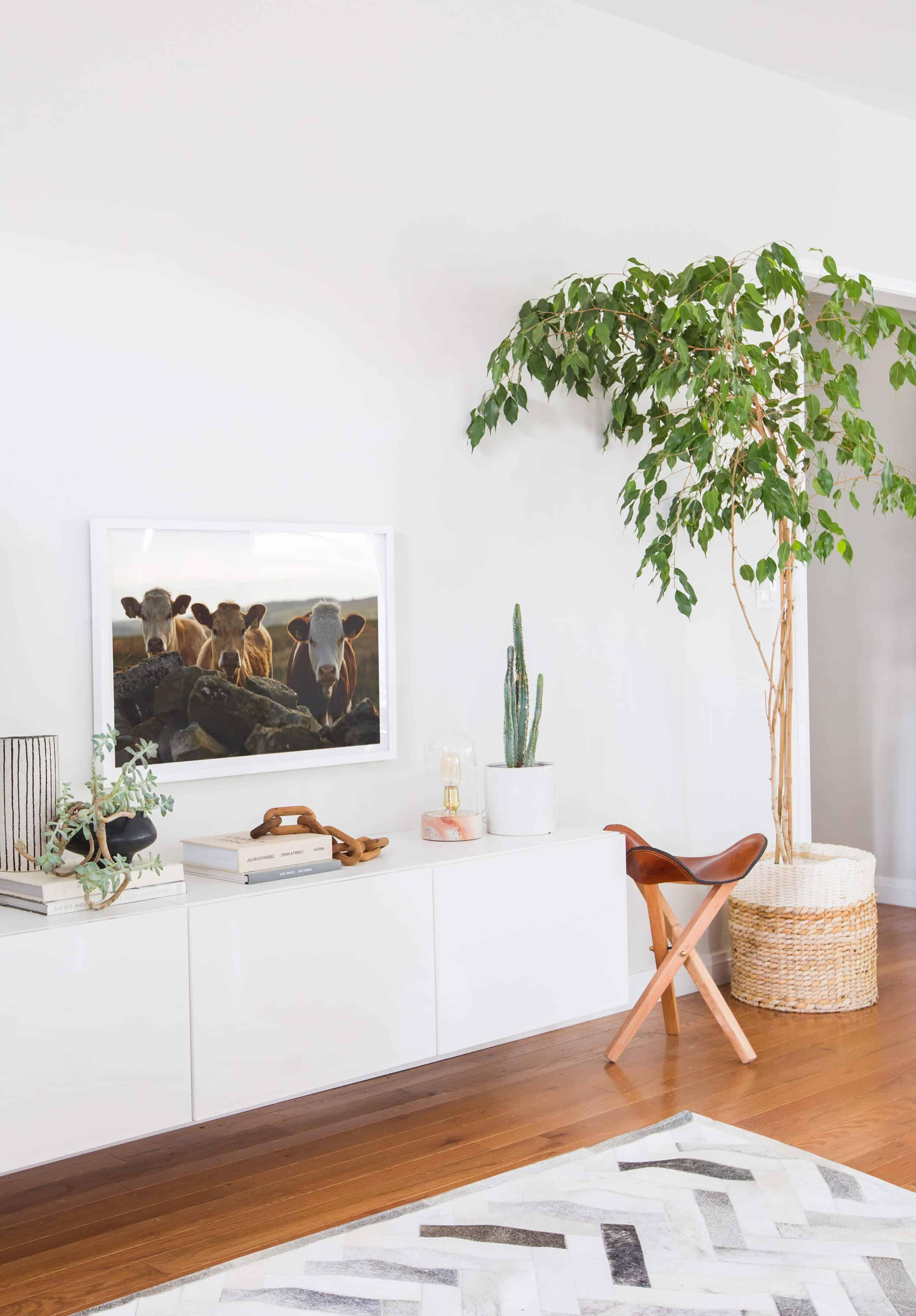 Emily Henderson Citizenry Photo Artwork Tessa Living Room Boho 24