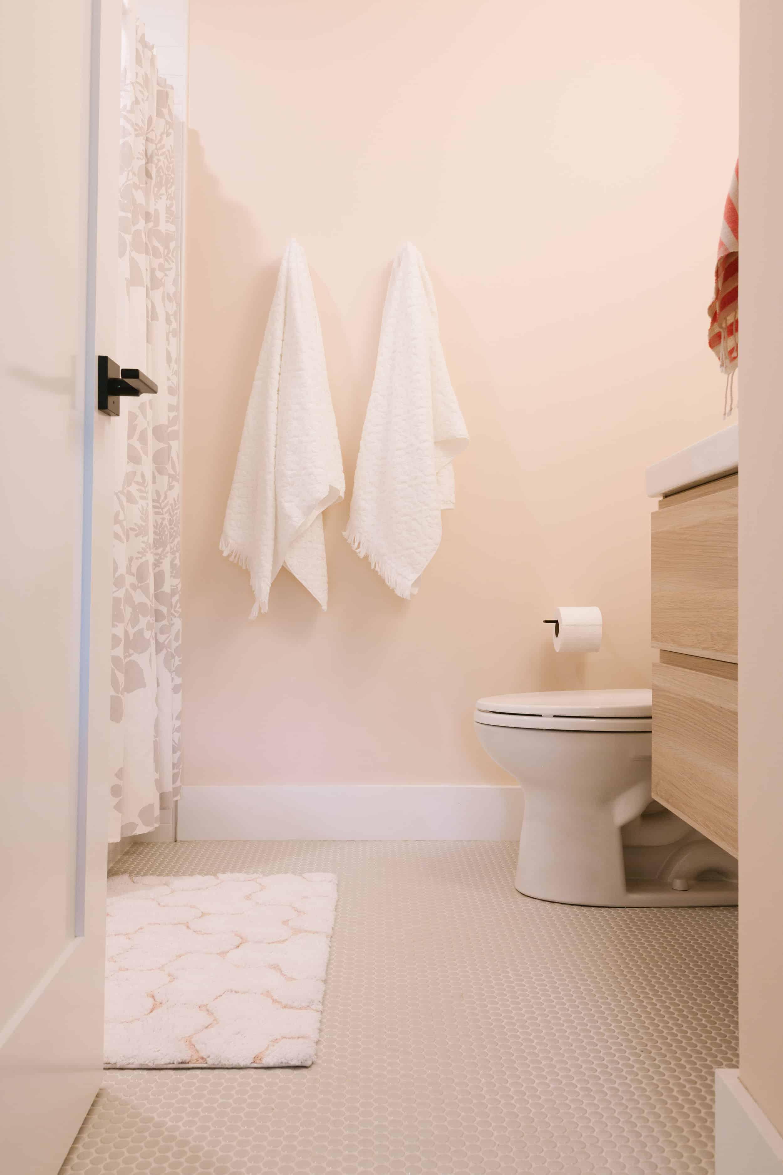 Samantha Gluck Emily Henderson Soft Pink Bathroom