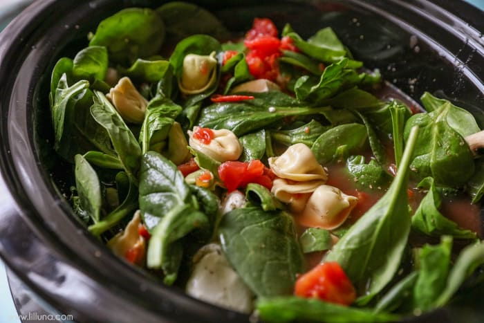 Easy Kid Friendly Slow Cooker Meals Tortellini Spinach Soup 2 Final