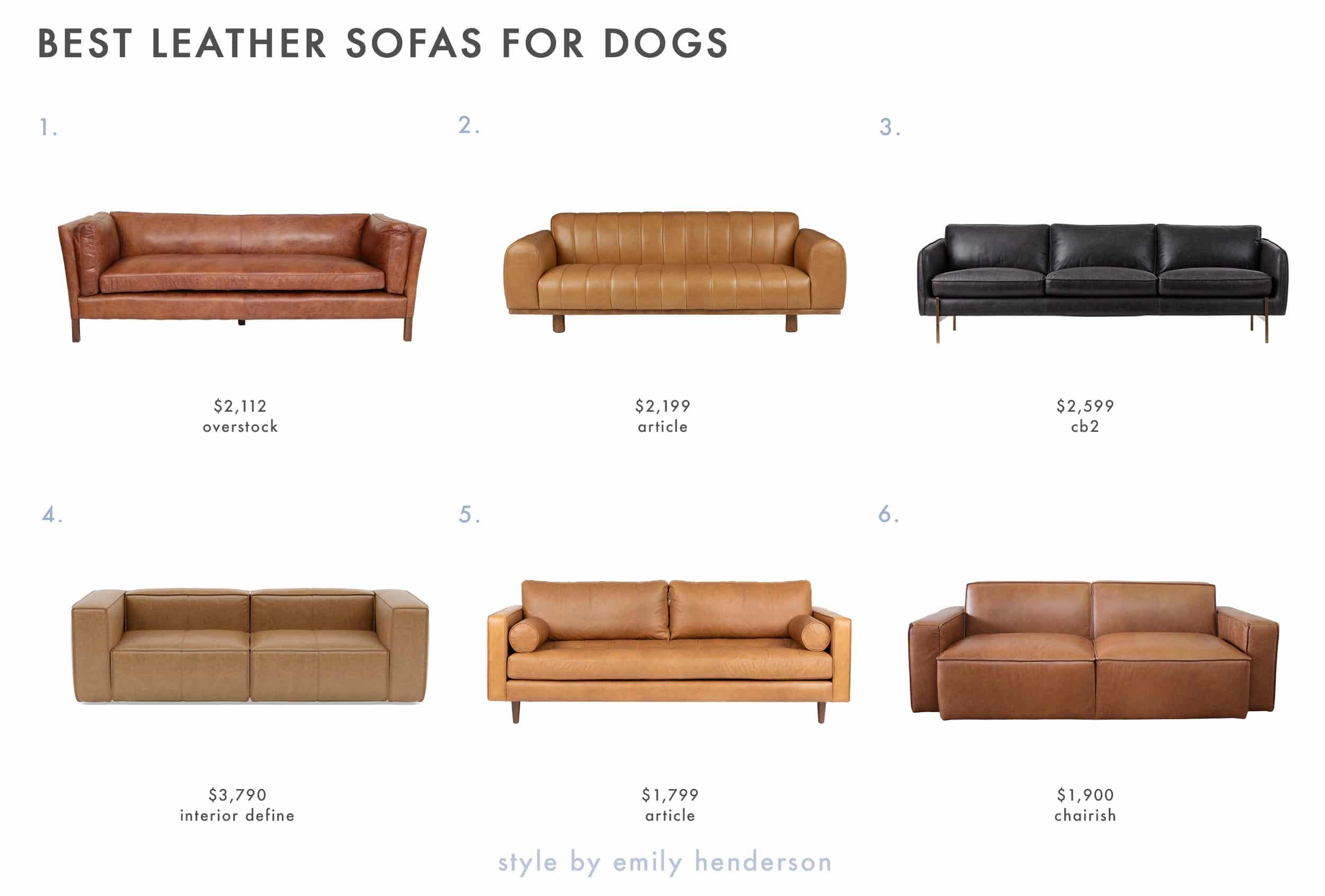 Dog Friendly Sofas 1