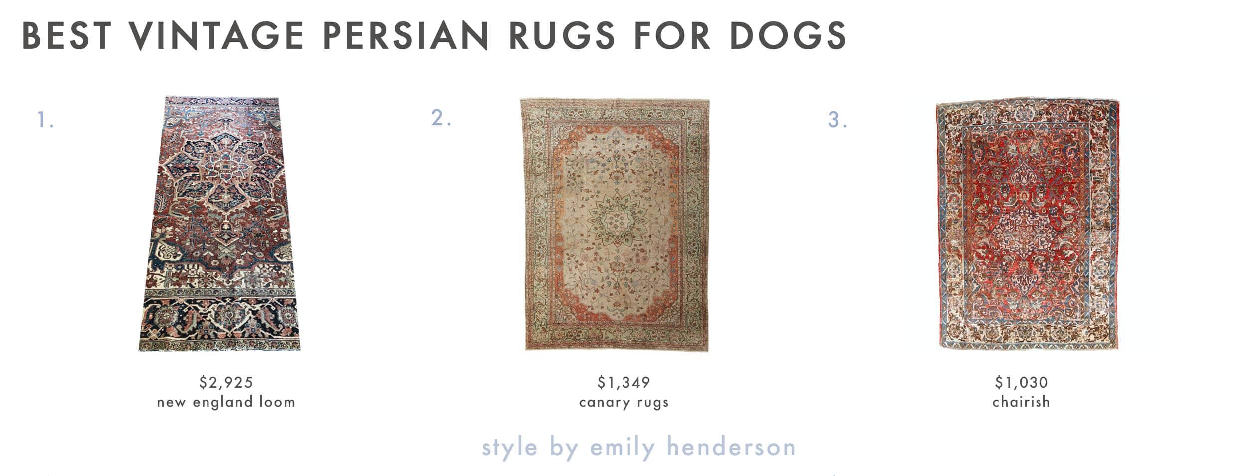 Dog Friendly Cowhide Rugs Copy