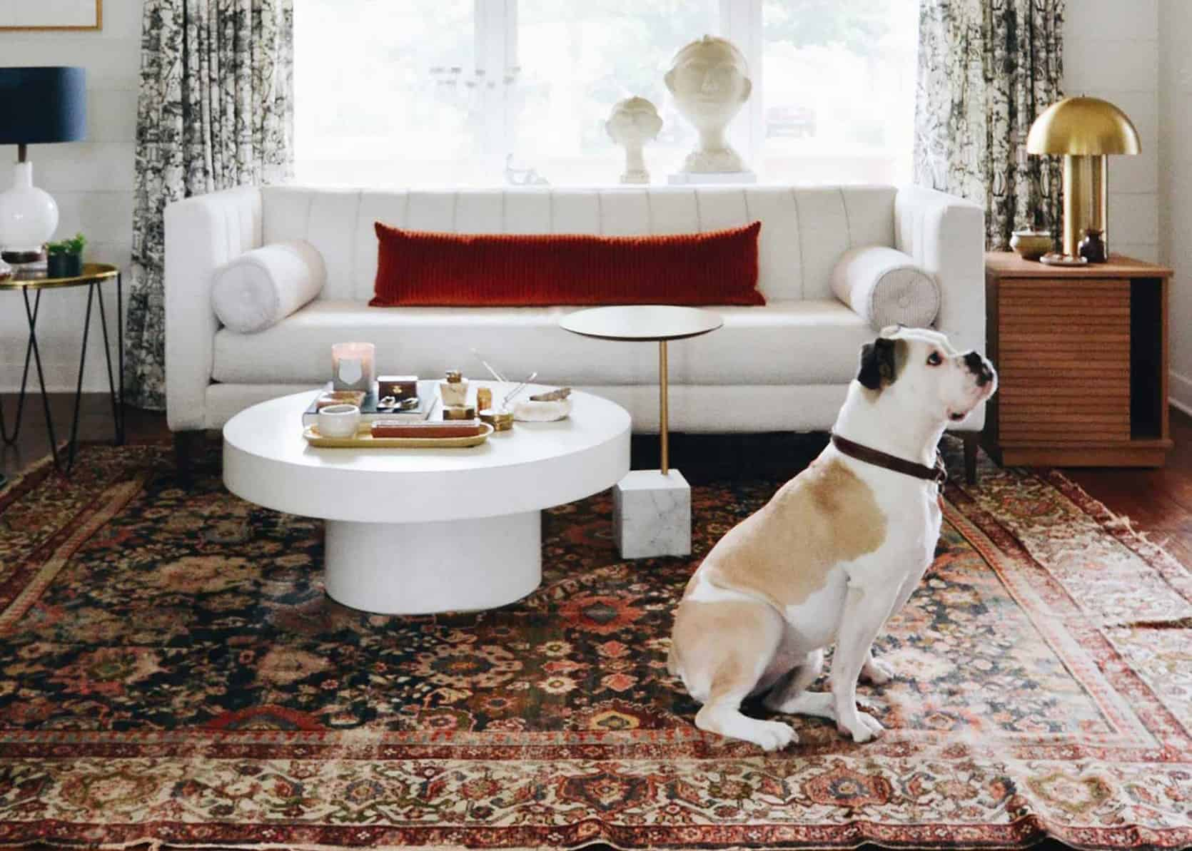 Does Your Home And Pup Want Cuter But Practical Accessories We Ve Got You Covered Emily Henderson