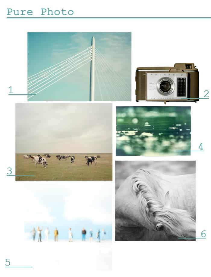 Pure Photo_Online Art