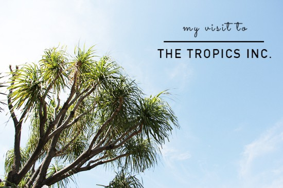 The Tropics My visit to