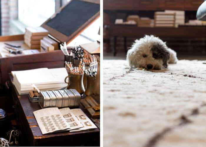 hammer_and_spear_emily_henderson_store_tour_downtown_los_angeles_vintage_office_supplies_puppy