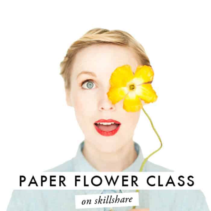 house-that-lars-built-paper