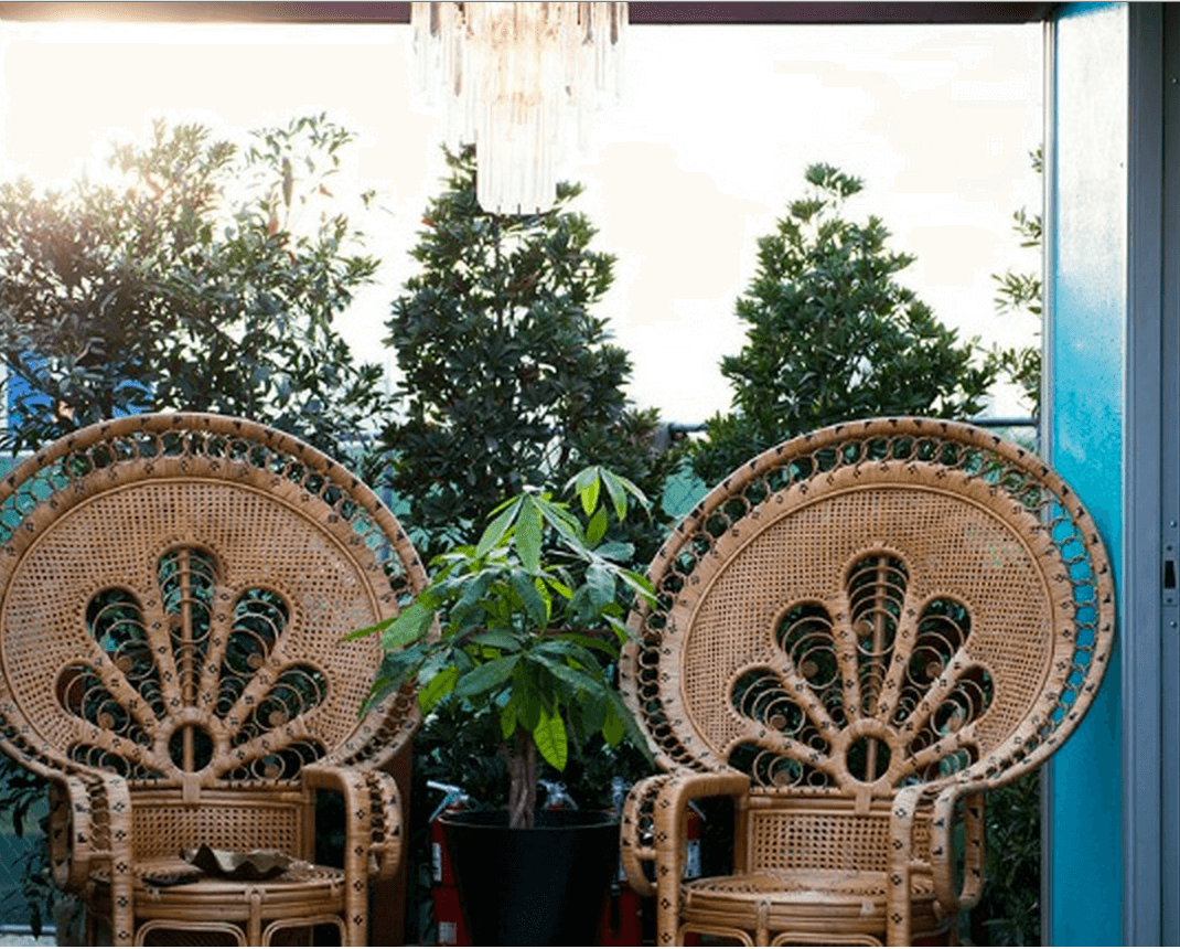 snoop peacock chairs