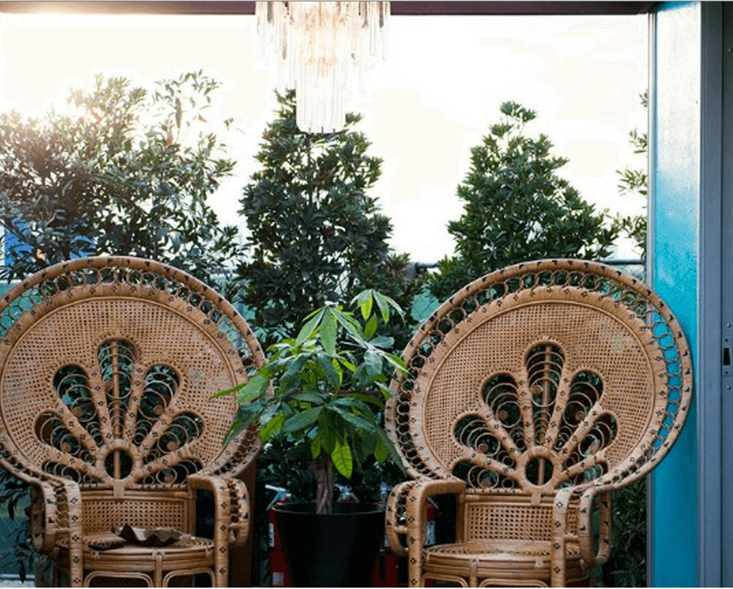 snoop peacock chairs