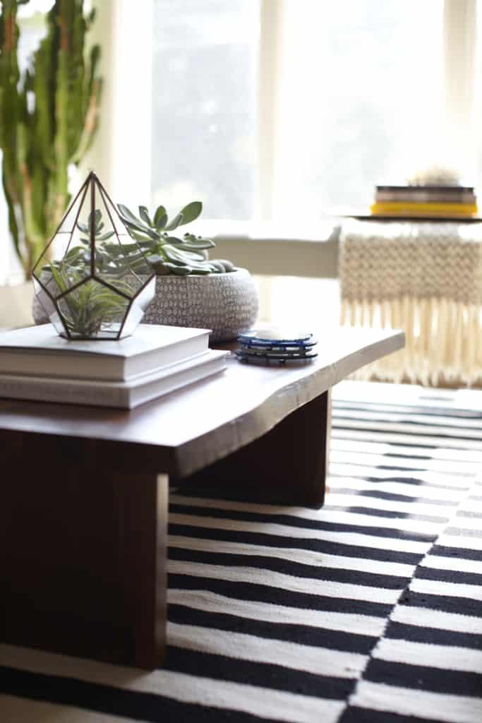 succulent centerpiece on rustic coffee table
