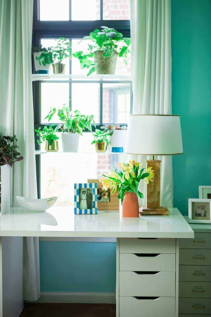 window-plant-shelves-2